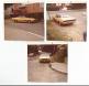 1972 Challenger Raylle
